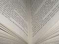Uit onderzoek blijkt dat jeugdliteratuur populair is onder debutanten.