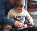 Een onderzoek stelt dat e-boeken met effecten slecht zijn voor kinderen.