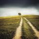 5 manieren om je middenstuk nieuw leven in te blazen