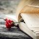 Elke zaterdag zet Schrijven Online het gedicht van de week online