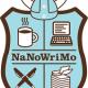 Mijn eerste NaNoWriMo – Deel 3: we zijn er bijna…