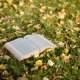 Vijf tips voor autobiografisch schrijven