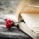 Iedere zaterdag staat het gedicht van de week op Schrijven Online.