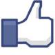 Like Schrijven Online op Facebook!